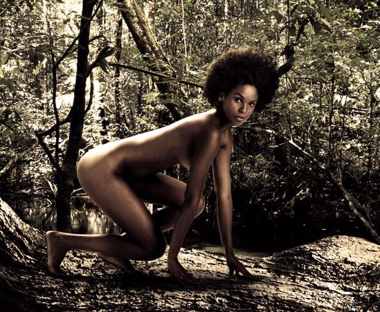 Publicité wwf dans la jungle