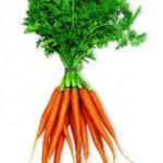 Peut-on être fan de carottes ?