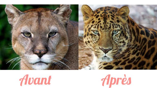 Moi avant et après ma grossesse avec le masque de grossesse