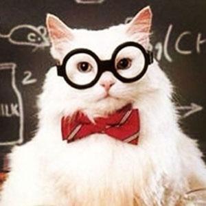 J'ai raté ma vie de nerd