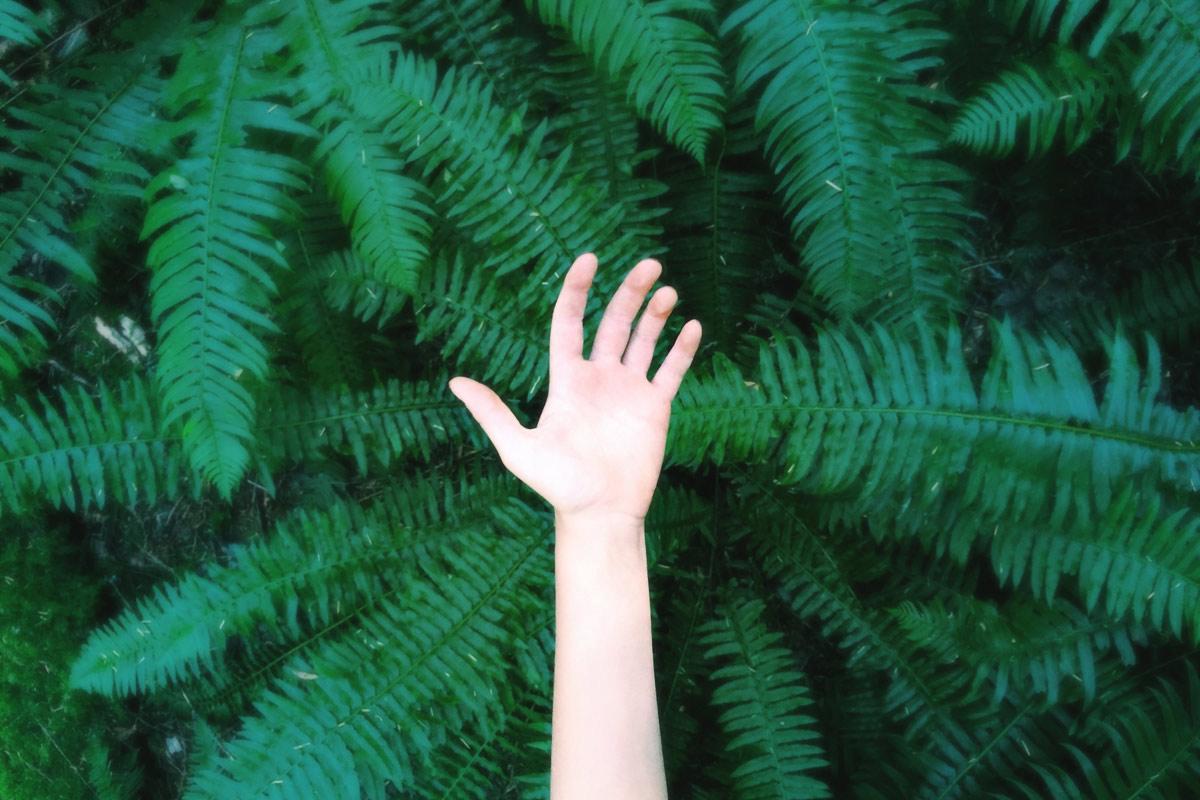 A 30 ans, je passe au vert et adopte les bons gestes pour la planète
